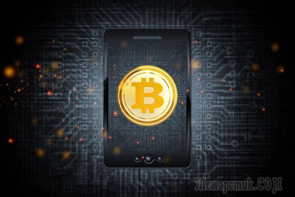 Что такое аппаратный кошелек, как выбрать лучший для хранения криптовалюты?